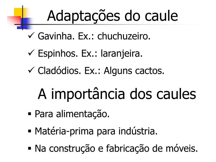 Adaptações do caule