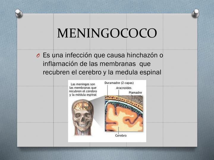MENINGOCOCO