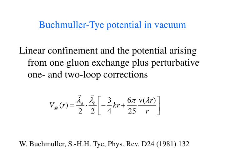 Buchmuller-Tye potential in vacuum