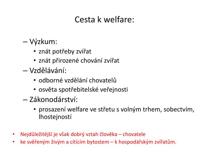 Cesta k welfare: