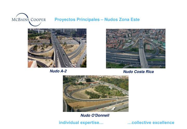 Proyectos Principales – Nudos Zona Este