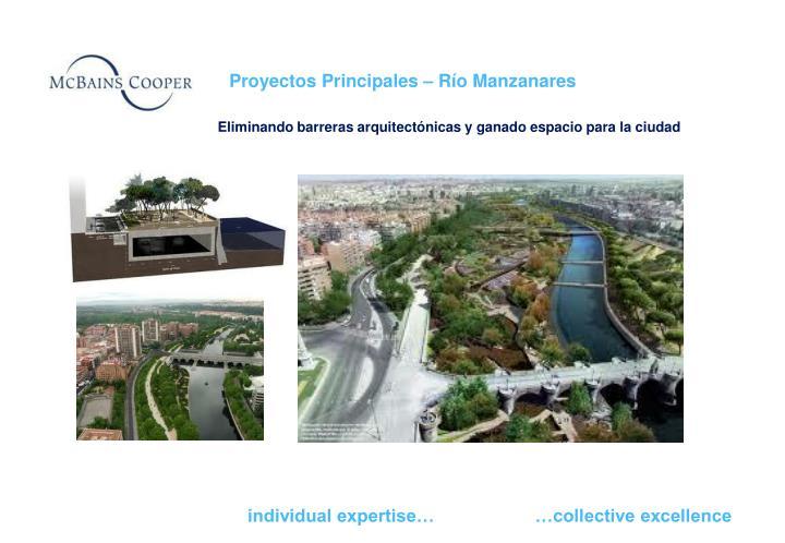 Proyectos Principales