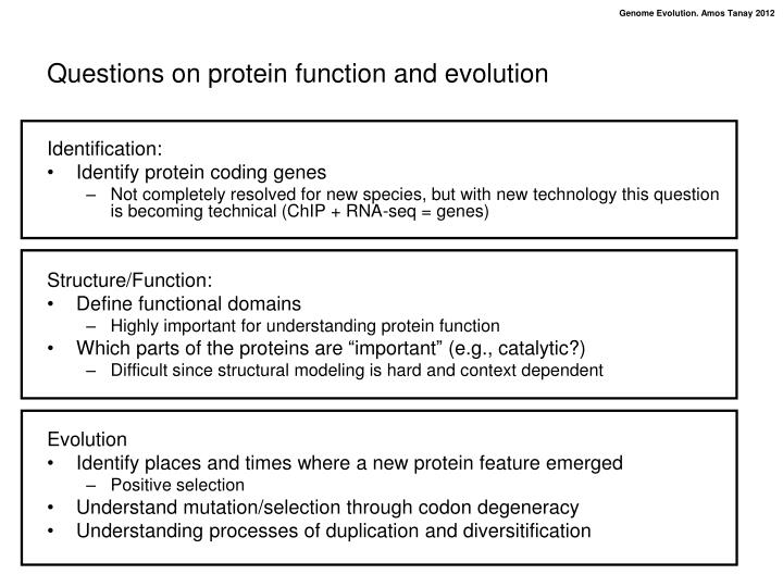 understanding the functions of proteins and In this thesis, representatives of both groups have been studied in order to  understand the functions of the various virus-encoded proteins in replication and .