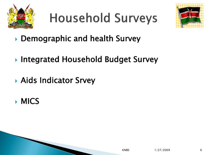 Household Surveys