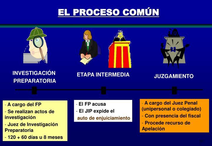 EL PROCESO COMÚN