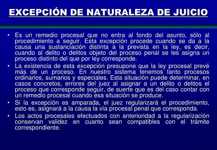 EXCEPCIÓN DE NATURALEZA DE JUICIO