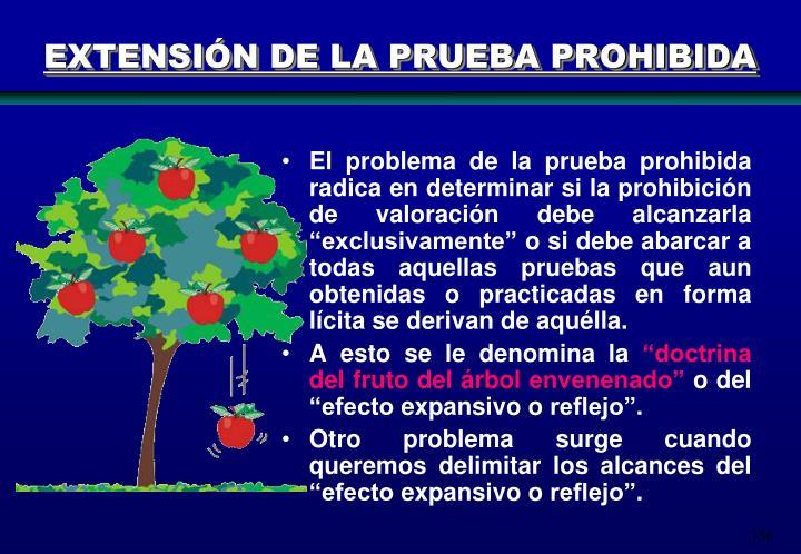 EXTENSIÓN DE LA PRUEBA PROHIBIDA