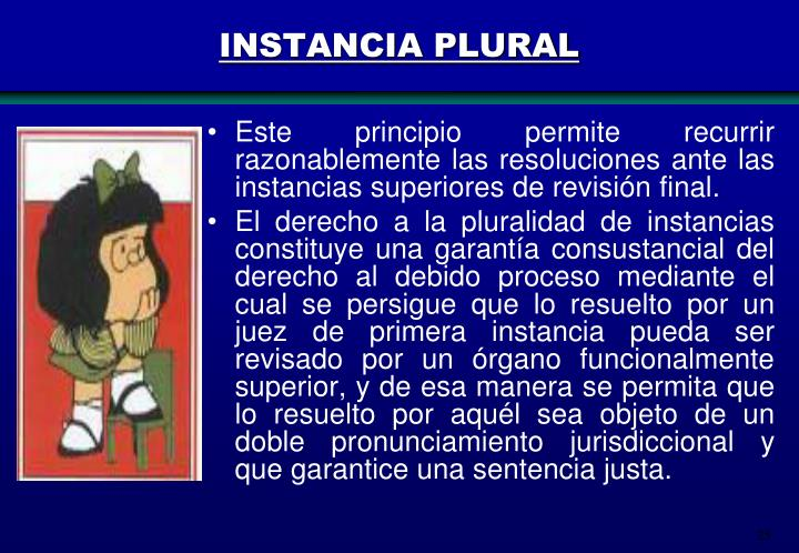 INSTANCIA PLURAL