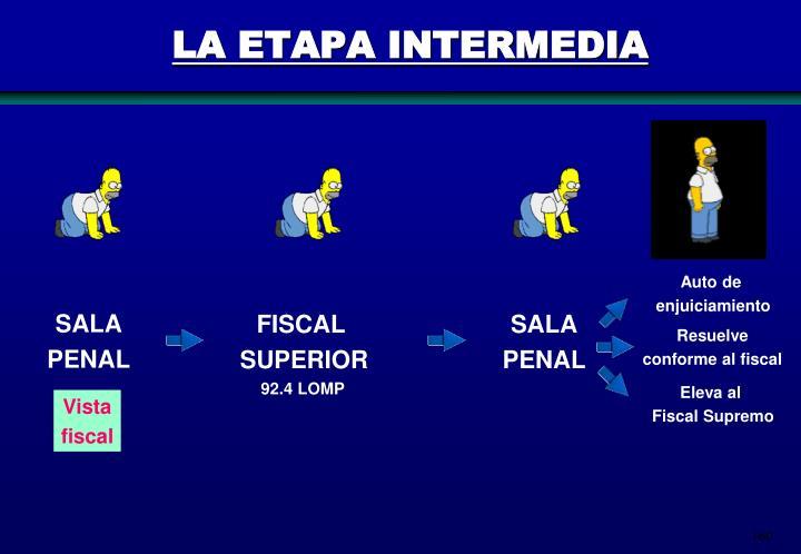 LA ETAPA INTERMEDIA
