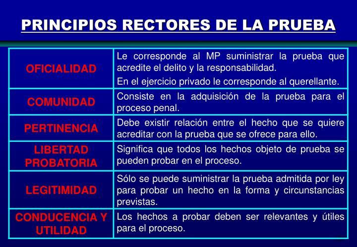 PRINCIPIOS RECTORES DE LA PRUEBA