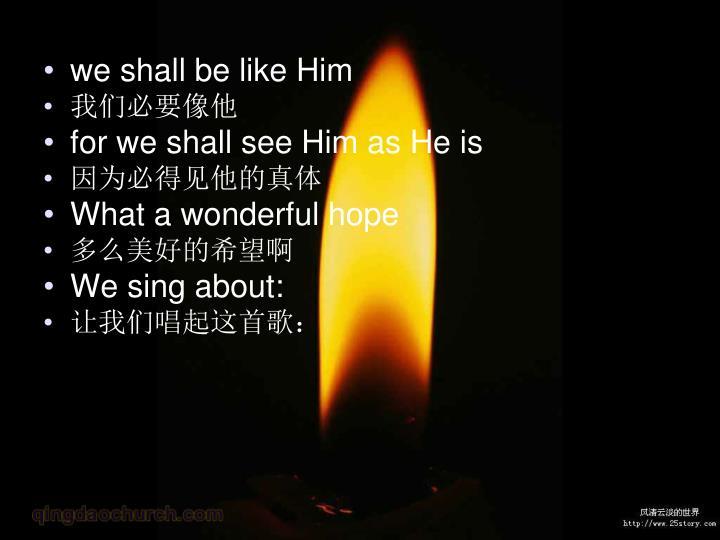 we shall be like Him