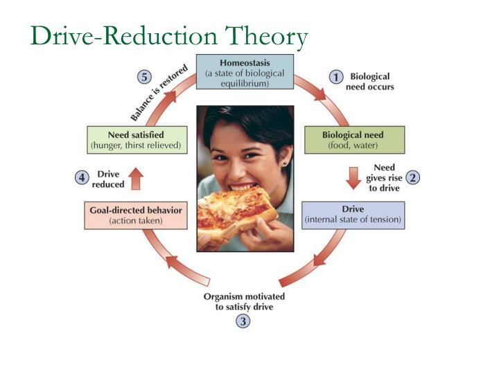 Drive-Reduction Theory