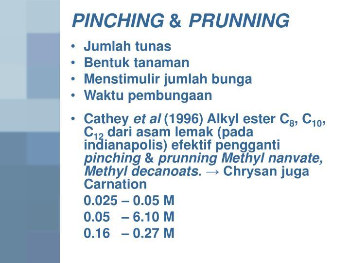 PINCHING