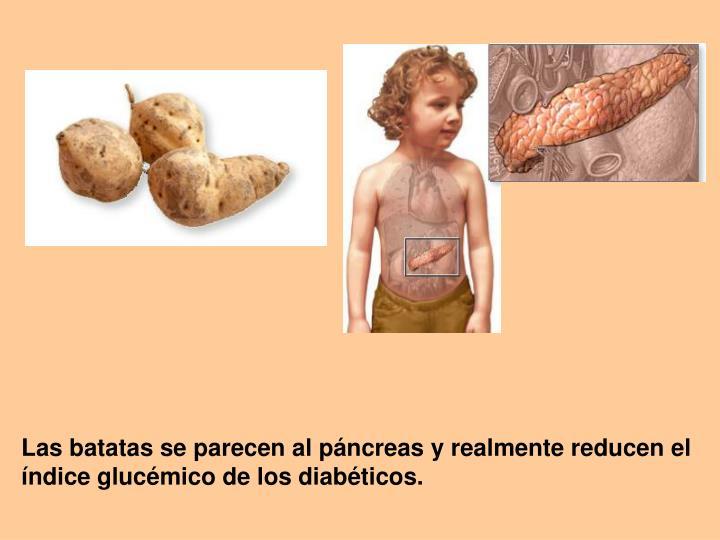 Las batatas se parecen al páncreas y realmente reducen el índice glucémico de los diabéticos.