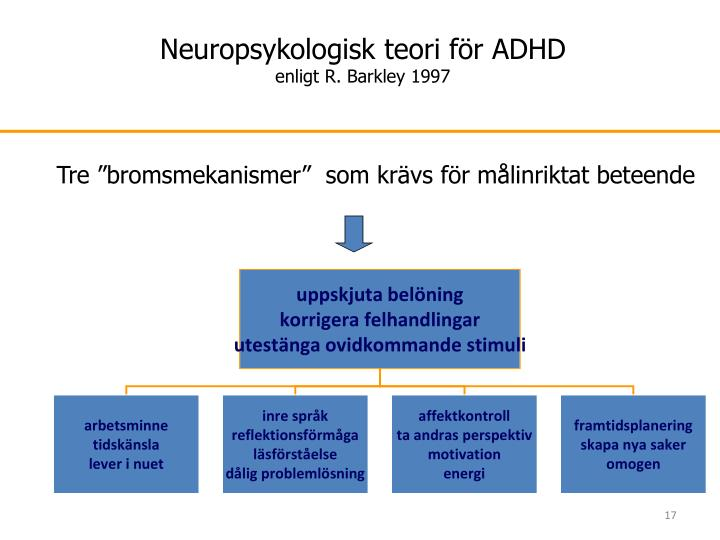 Neuropsykologisk teori för ADHD