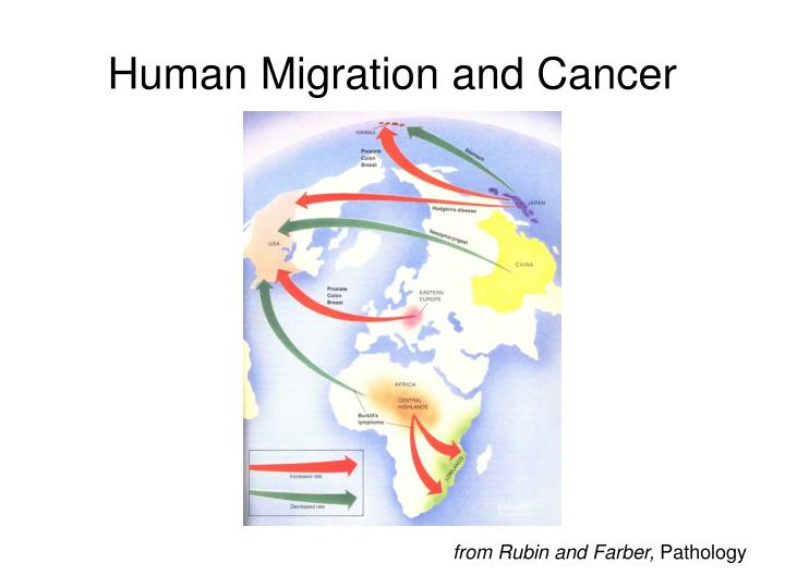 Human Migration and Cancer