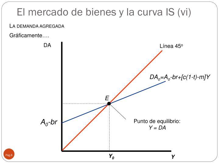 El mercado de bienes y la curva IS (vi)