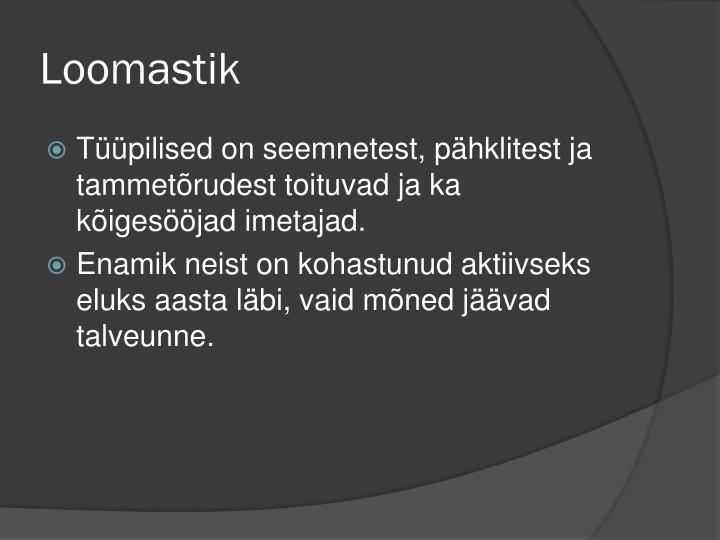 Loomastik