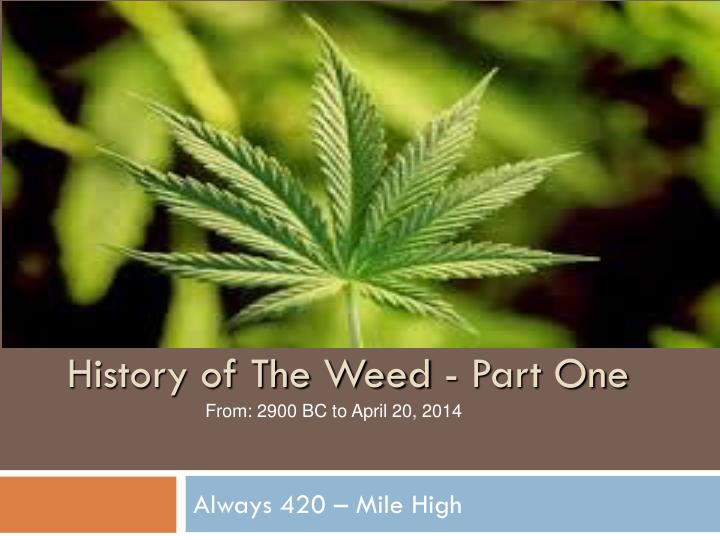 History of The Weed - Part One
