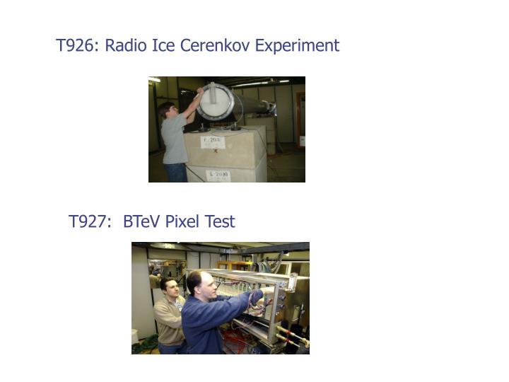 T926: Radio Ice Cerenkov Experiment