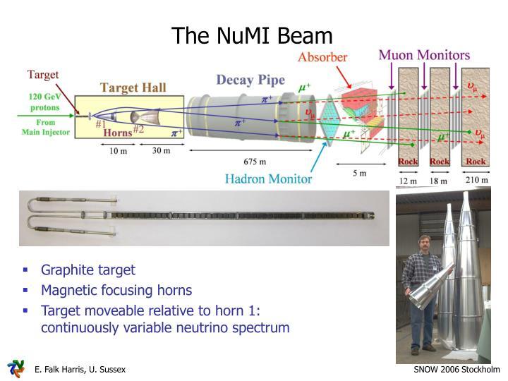 The NuMI Beam
