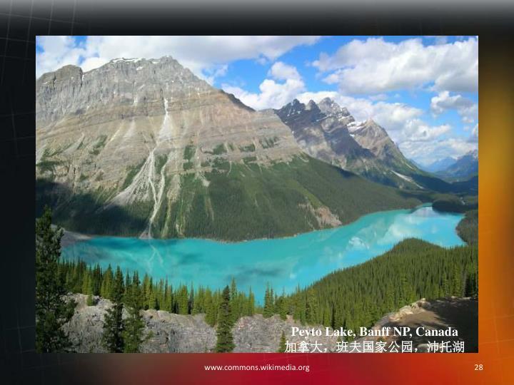 Peyto Lake, Banff NP, Canada
