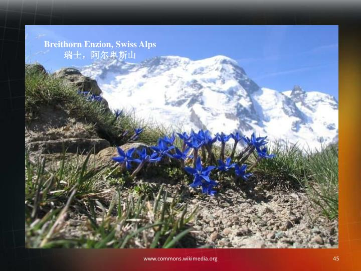 Breithorn Enzion, Swiss Alps