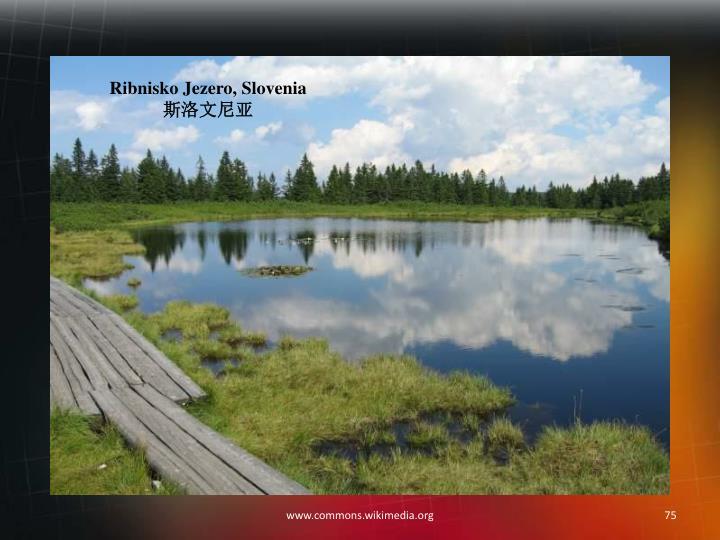 Ribnisko Jezero, Slovenia