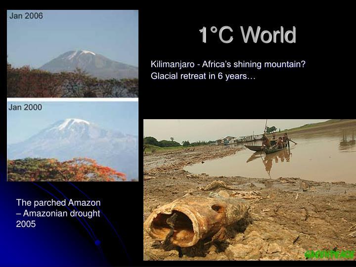 1°C World