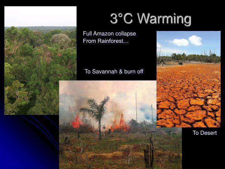 3°C Warming