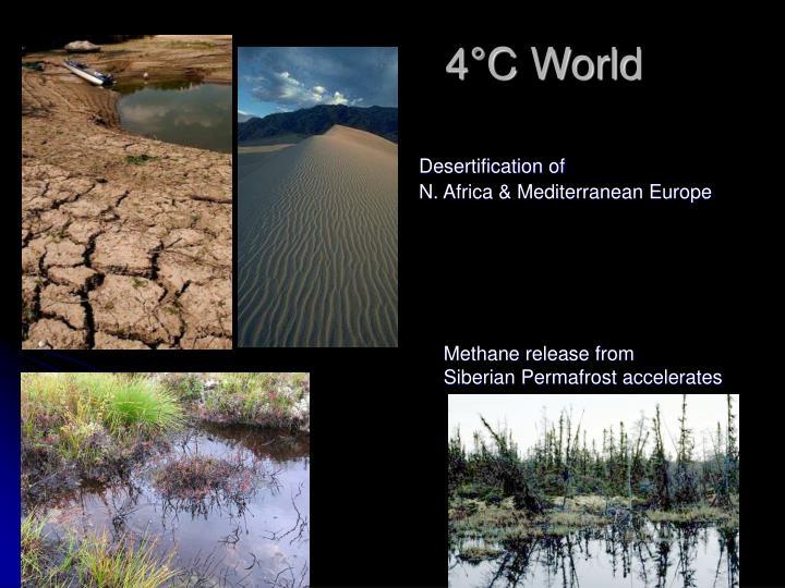 4°C World