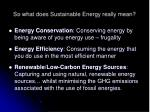 so what does sustainable energy really mean