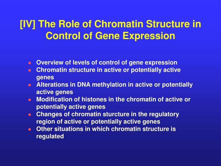 [IV] The Role of Chromatin Structure in Control of Gene Expression