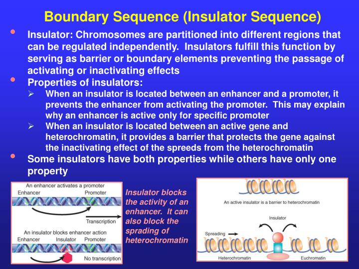 Boundary Sequence (Insulator Sequence)