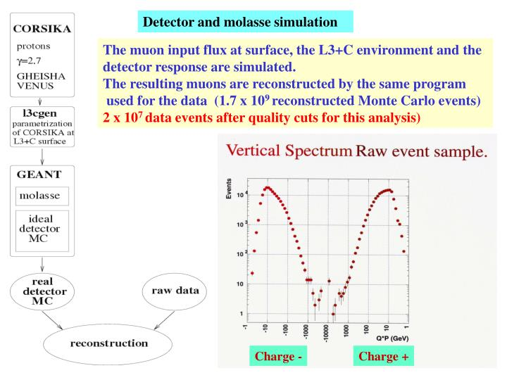 Detector and molasse simulation