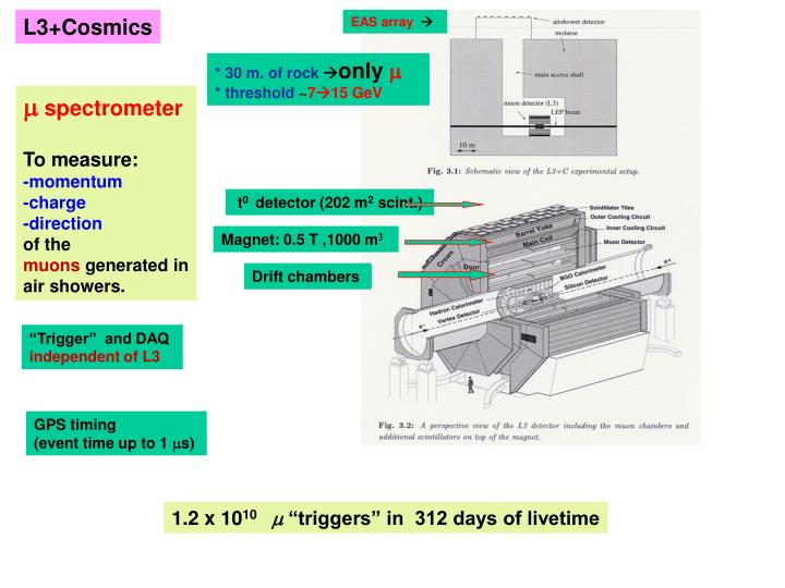 L3+Cosmics
