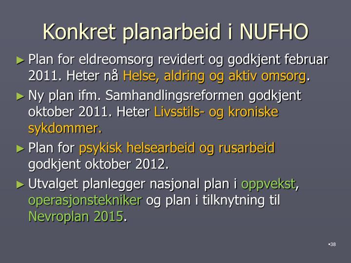 Konkret planarbeid i NUFHO