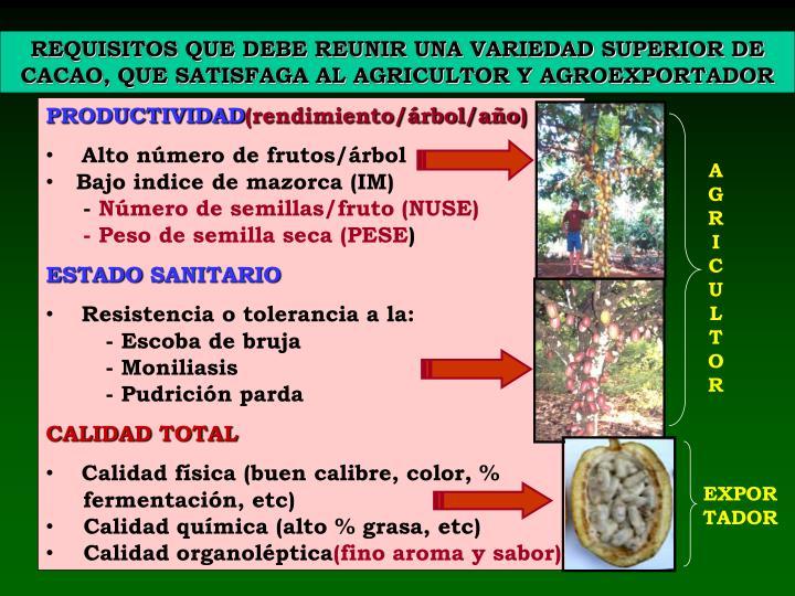 REQUISITOS QUE DEBE REUNIR UNA VARIEDAD SUPERIOR DE CACAO, QUE SATISFAGA AL AGRICULTOR Y AGROEXPORTADOR