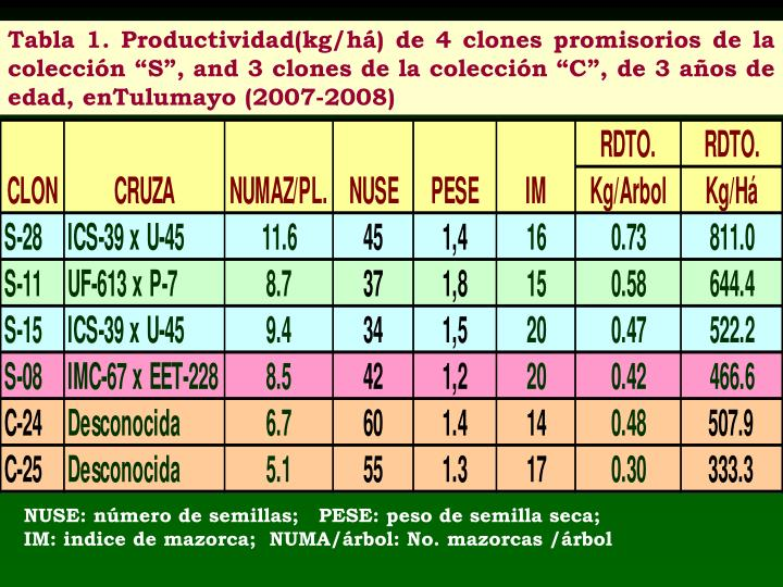 """Tabla 1. Productividad(kg/há) de 4 clones promisorios de la colección """"S"""", and 3 clones de la colección """"C"""", de 3 años de edad, enTulumayo (2007-2008)"""