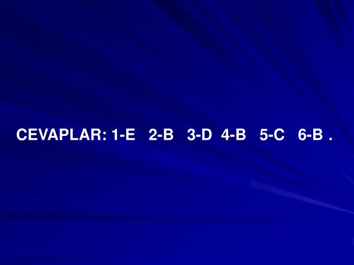 CEVAPLAR: 1-E   2-B   3-D  4-B   5-C   6-B