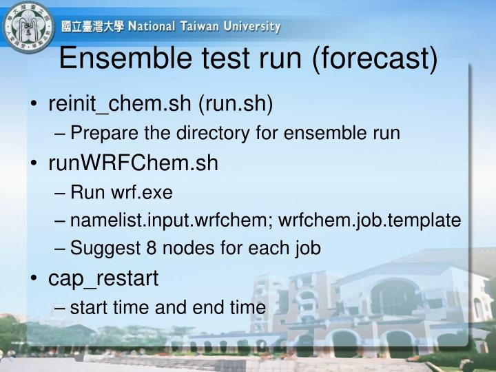 Ensemble test run (forecast)
