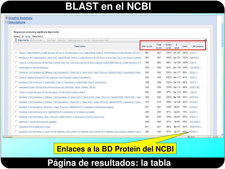 Enlaces a la BD Protein del NCBI