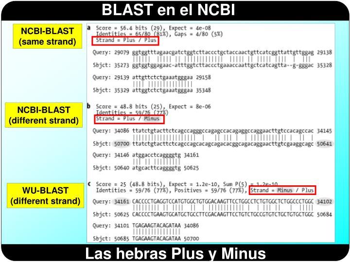 NCBI-BLAST (same strand)