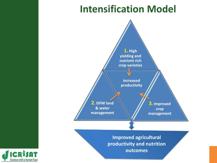 Intensification Model