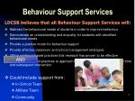 behaviour support services1