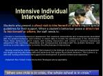 intensive individual intervention