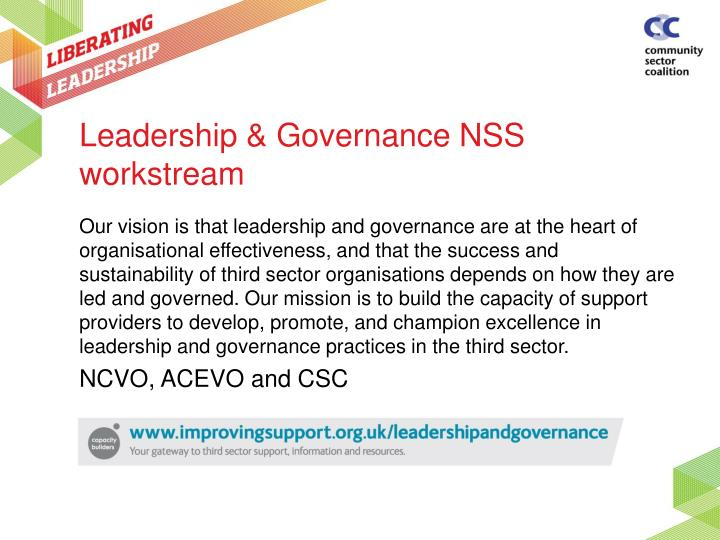Leadership governance nss workstream