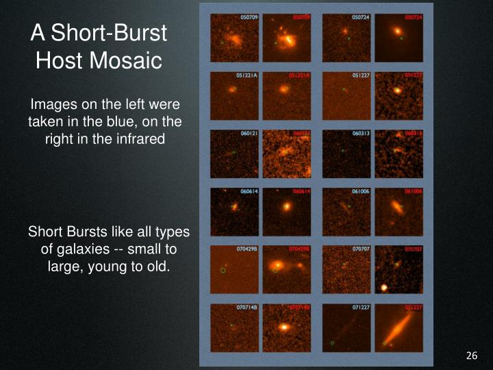 A Short-Burst Host Mosaic