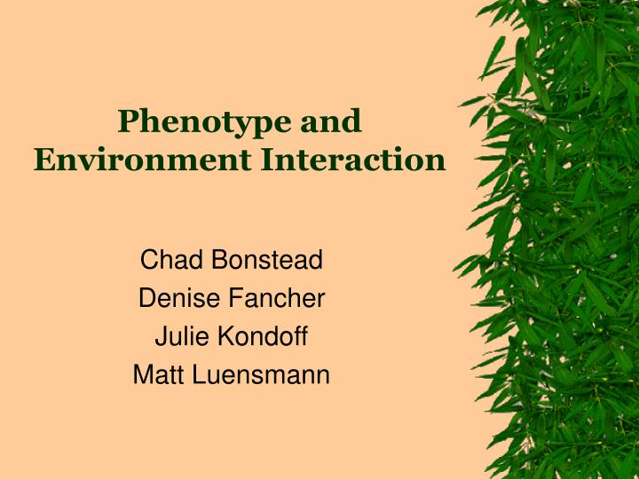 Phenotype and environment interaction