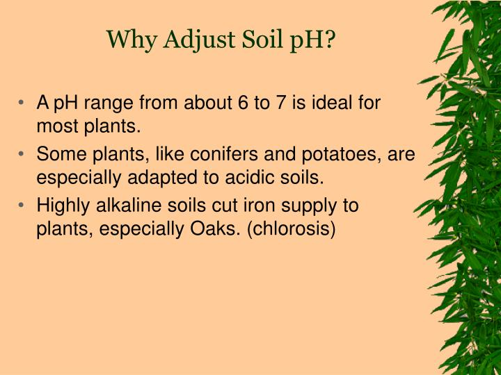 Why Adjust Soil pH?